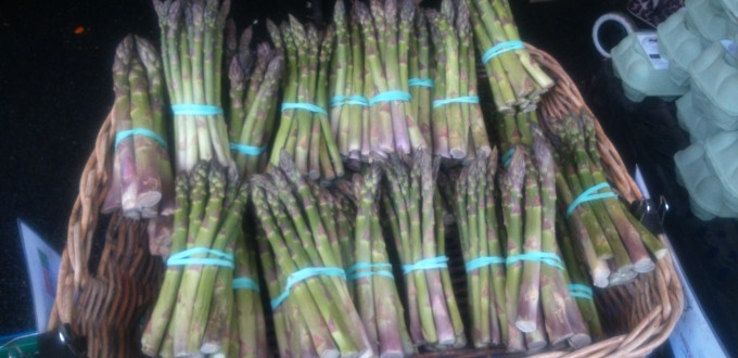 Local organic asparagus at the farmers market